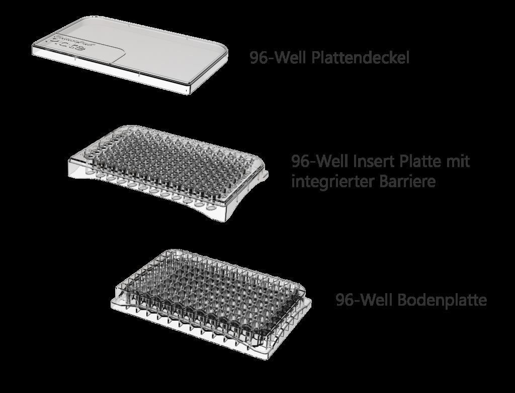 Zusammensetzung der PermeaPad Plate